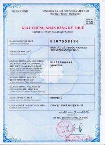 giấy chứng nhận đăng ký thuế